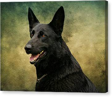 Black German Shepherd Dog IIi Canvas Print by Sandy Keeton