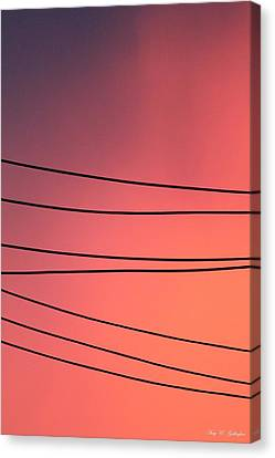 Black Lines And Night Skies  Canvas Print by Amy Gallagher