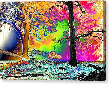 Black Oaks Yosemite Abstract Canvas Print
