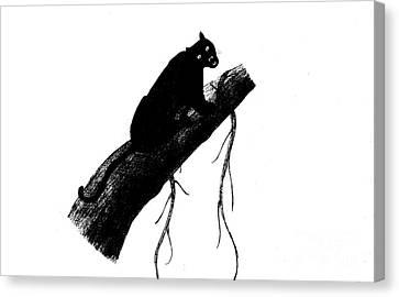 Black Panther Canvas Print by Mashukur  Rahman