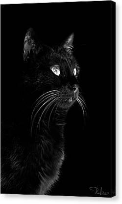 Black Portrait Canvas Print