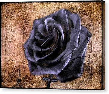 Canvas Print featuring the photograph Black Rose Eternal   by David Dehner