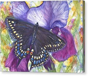 Black Swallowtail Butterfly Canvas Print by Patricia Allingham Carlson
