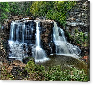 Canvas Print featuring the photograph Black Water Falls by Mark Dodd