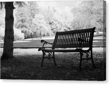 Charleston Black And White Infrared Charleston Battery Park Bench Canvas Print by Kathy Fornal