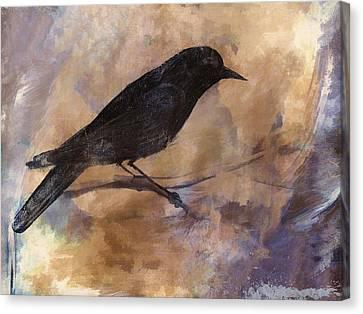 Blackbird Canvas Print by Carol Leigh