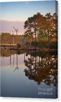 Blackwater Reflections Canvas Print by Susan Isakson