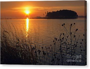 Blackwater Sunrise Canvas Print by Susan Isakson