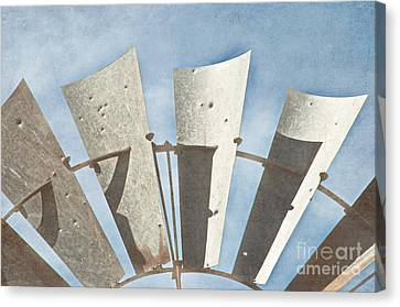 Blades - Texture Canvas Print by Bob and Nancy Kendrick
