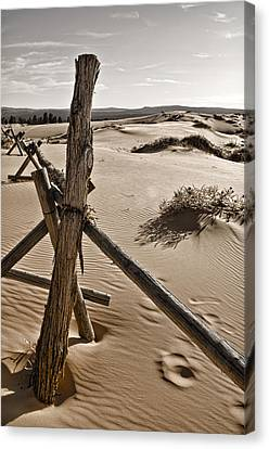 Coral Pink Sand Dunes Canvas Print - Bleak by Heather Applegate