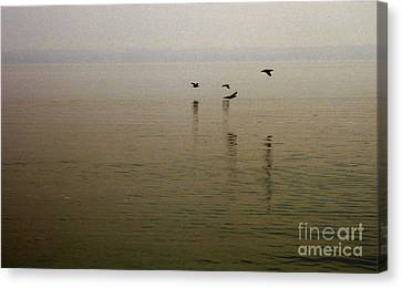 Canvas Print featuring the photograph Bliss by Clayton Bruster
