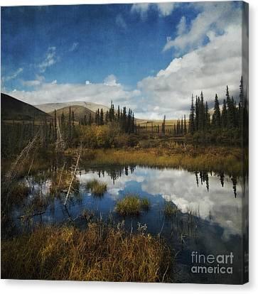 Blissful Lone Land Canvas Print