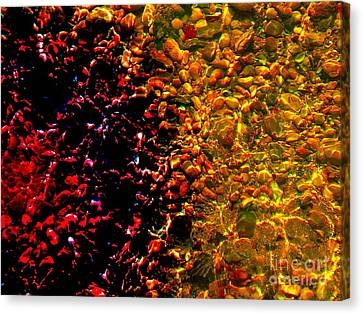 Blood In The Water Canvas Print by Silvie Kendall