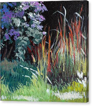 Bloodgrass And Asters Canvas Print by Melody Cleary