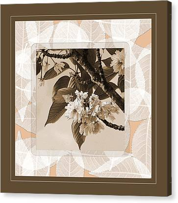Blooming Branch Canvas Print by Bonnie Bruno