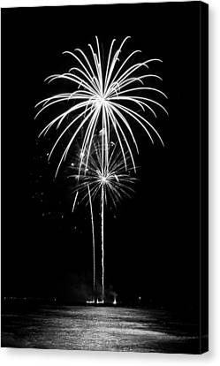 Blooming In Black And White Canvas Print by Bill Pevlor