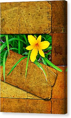 Blooming Out Canvas Print by Larry Bishop
