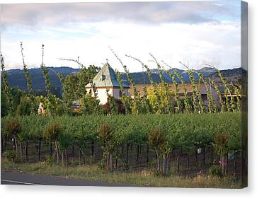 Blowing Grape Vines Canvas Print by Holly Blunkall