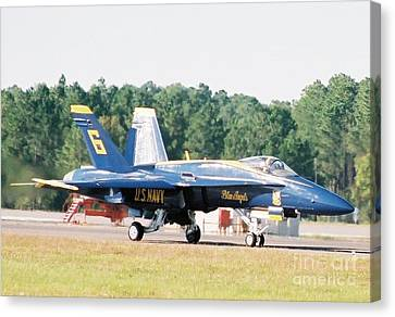Blue Angel Canvas Print by Clint Day