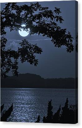Blue Bay - A Tropical Paradise, The Moon Glancing Thru The Leaves And Reflecting Off The Bay Canvas Print