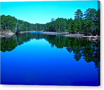 Blue Beauty Canvas Print by Frank SantAgata