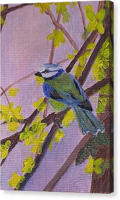 Blue Bird Canvas Print by Christy Saunders Church