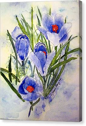 Blue Crocus In The Snow Canvas Print by Joann Perry