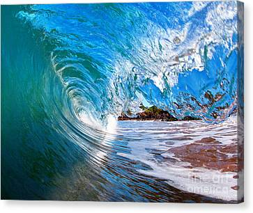 Michael Sweet Canvas Print - blue Curl by Michael Sweet