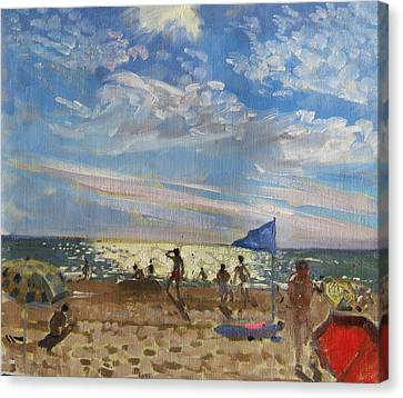 Blue Flag And Red Sun Shade Canvas Print by Andrew Macara