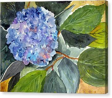 Blue Flower Canvas Print by John Smeulders