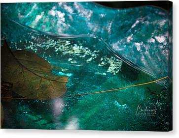 Blue Glass Bird Bath Canvas Print