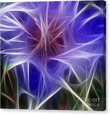 Blue Hibiscus Fractal Panel 2 Canvas Print by Peter Piatt