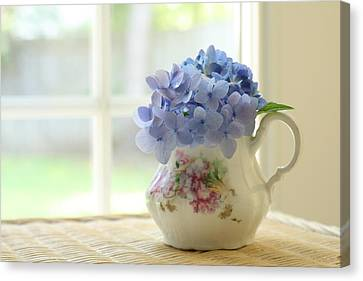 Old Pitcher Canvas Print - Blue Hydrangeas In Antique Floral Pitcher by Judy Davidson