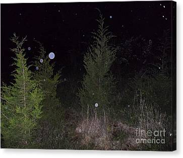 Blue In The Greenery Canvas Print