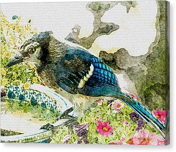 Blue Jay Art Canvas Print by Debbie Portwood
