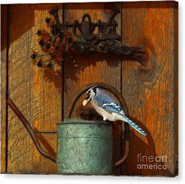 Blue Jay On Watering Can Canvas Print by Marjorie Imbeau