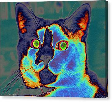 Blue Kitty Canvas Print