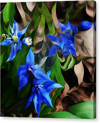 Blue Manipulation Canvas Print by David Lane