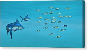 Blue Marlin And Yellowfin Tuna Canvas Print by Walter Colvin