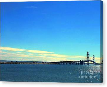 Canvas Print featuring the photograph Blue Meets Blue by Lin Haring
