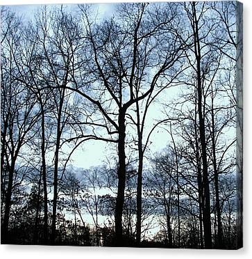 Canvas Print featuring the photograph Blue Mirage by Pamela Hyde Wilson