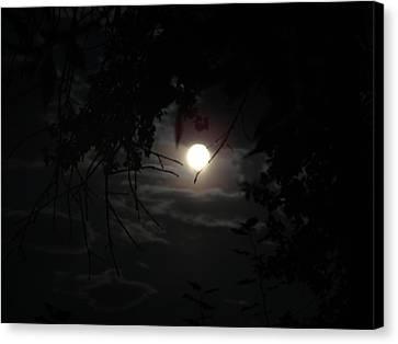 Blue Moon Canvas Print by K Walker