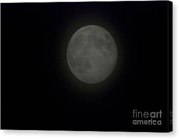 Blue Moon Canvas Print by Thomas Woolworth