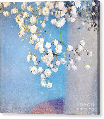 Blue Morning Canvas Print by Lyn Randle