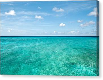 Blue On Blue  Canvas Print by Jim Chamberlain