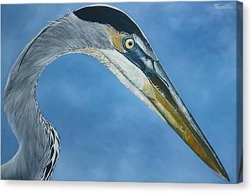 Canvas Print - Blue On Blue by Jon Ferrentino