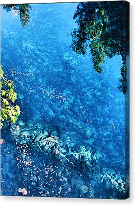 Blue Pool I Mckenzie River Oregon Canvas Print