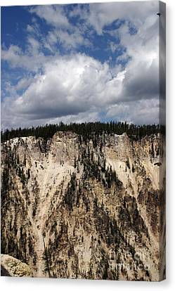 Blue Skies And Grand Canyon In Yellowstone Canvas Print by Living Color Photography Lorraine Lynch