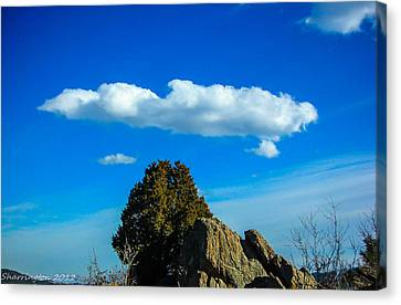Canvas Print featuring the photograph Blue Skies by Shannon Harrington