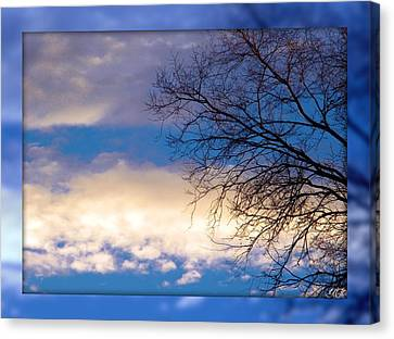 Canvas Print featuring the photograph Blue Sky by Michelle Frizzell-Thompson